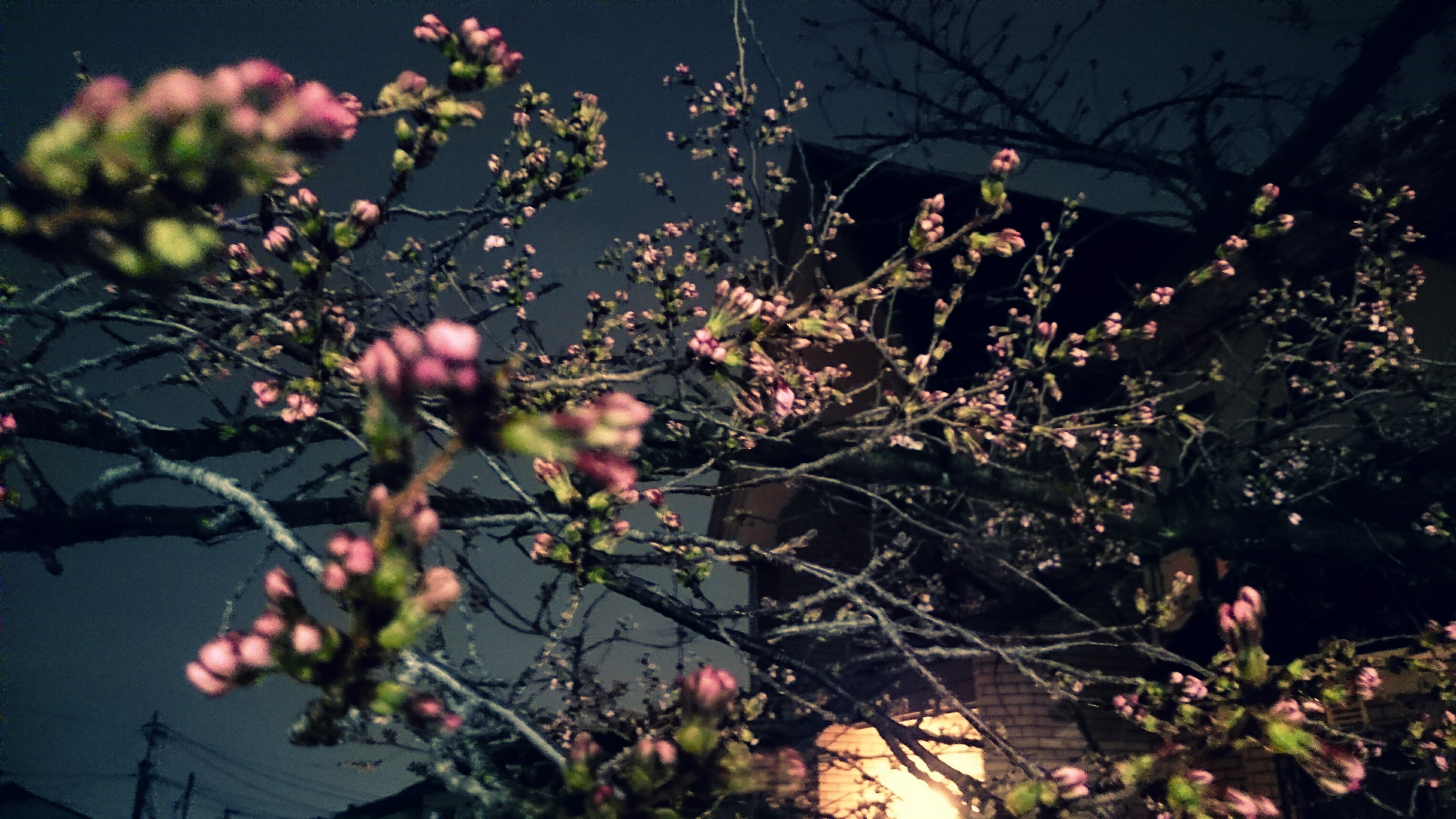 PicsArt_03-31-10.29.02