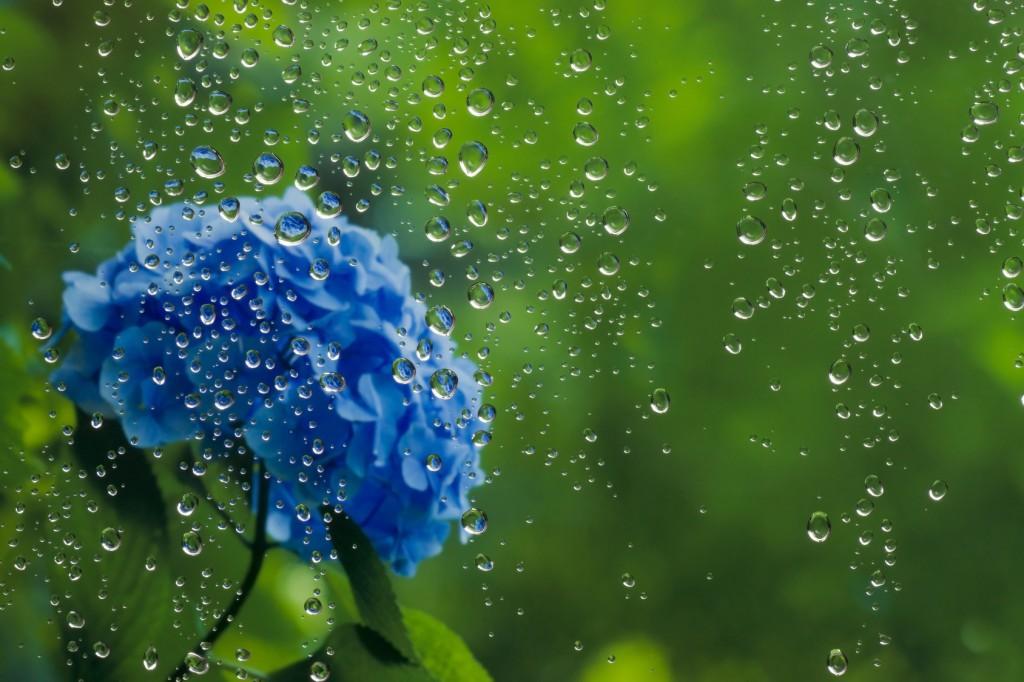 梅雨楽しみ方過ごし方_001-1024x682