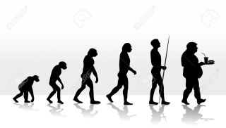 illustration of human evolution and eating habits