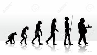 illustration of human evolution and eating habits
